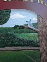 Timberland Bird 11.29.17