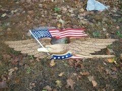 Eagle with Flag