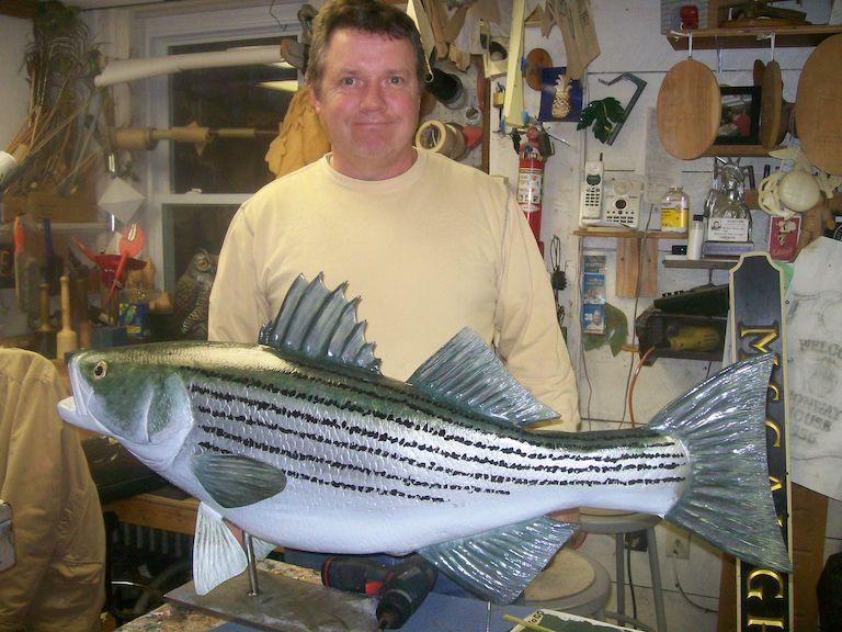 striped bass 004
